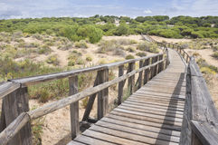 Beach of Huelva Stock Images