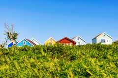 Beach huts with trees Royalty Free Stock Photography