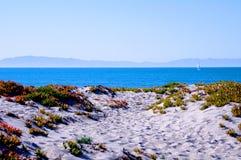 Beach with ice plant Santa Barbara Channel Royalty Free Stock Photo