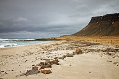 Beach in Iceland Stock Image