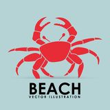 Beach icon. Design,  illustration eps10 graphic Royalty Free Stock Photography