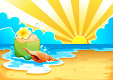 A beach. Illustration of a beach and coconut Royalty Free Stock Photo