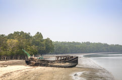 Beach In Sundarbans National Park In Bangladesh Royalty Free Stock Photo