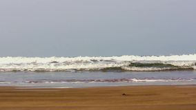 Beach - India. Shot at Ghuhaghar beach Maharashtra. India stock video