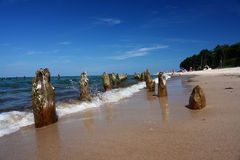 Beach, intensive colors, pieces of wood. royalty free stock photo