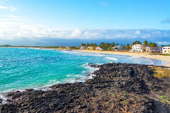 Beach on Isabela Island in Galapagos. View of the beach in front of Puerto Villamil on Isabela Island in the Galapagos Islands in Ecuador Royalty Free Stock Photography