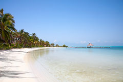 Beach on the Isla Contoy Royalty Free Stock Image