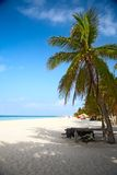 Beach on the Isla Mujeres. Mexico Stock Photography