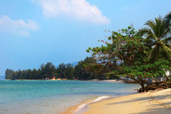 Beach island. Empty beach with trees and views of the island Royalty Free Stock Photo