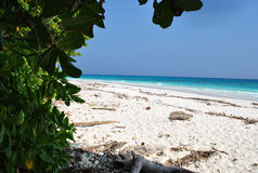 Beach on the island Tachai. Tachai island located in the open sea in Thailand. The beach and the sun Stock Images