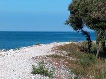 Beach in Istria. Croatian shore near Pula stock photography