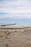 Beach in Italy Royalty Free Stock Photo