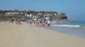 Beach Jandia Playa, Fuerteventura, Spain stock footage