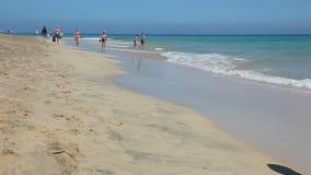 Beach Jandia Playa, Fuerteventura, Spain stock video footage