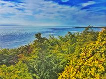 Beach Jungle. Heavy vegetation on Lake Michigan Royalty Free Stock Photo