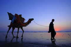 Beach of Karachi Sunset Camel Stock Photo