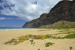 Beach in Kauai, Hawaii Island. Polihale Beach on Kauai, Hawaii near militar zone of Barking Sand and Na Pali Coast. There is great blu sky with clouds Royalty Free Stock Photo