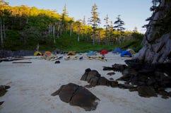 Beach, kayaks and tents, early morning light, Great Bear Rainforest, British Columbia. Sandy beach with kayaks and tents in the early morning light, Great Bear Stock Photos
