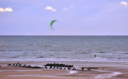 Beach kite surfer Royalty Free Stock Images