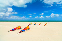 Beach kites Royalty Free Stock Photography