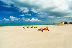 Beach kites Stock Photo