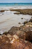 Beach of Ko Lan Island Royalty Free Stock Photography