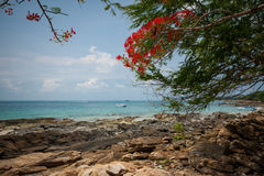 Beach on Koh Samet Royalty Free Stock Photos