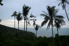 Beach in Koh Samui Royalty Free Stock Image