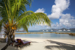 Beach at La Digue Stock Images