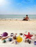 Beach landscape. With seashell, man and dog Stock Images