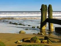 Free Beach Landscape Stock Image - 3837561