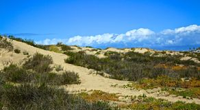 Beach landscape Oxnard California Royalty Free Stock Photo