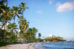 Beach landscape scene at Bahia, Brazil. A tropical beach with coconut trees and blue sky at Bahia, Brazil Royalty Free Stock Photos