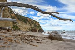 Beach landscape with sea cliffs and sun-bleached driftwood. Waves wash over large boulders at the base of a sea cliff. Ancient logs have been washed in by the royalty free stock images