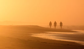 Beach Landscape Silhouetted Sunrise Walkers NC. Three people walk the beach on the Cape Hatteras National Seashore at sunrise in Frisco, North Carolina NC East Royalty Free Stock Photos