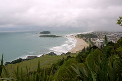 Beach Landscape, Tauranga City, North Island, New Zealand Stock Photos