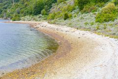 Beach in Lapataia bay,Tierra del Fuego National Park. Ushuaia, Argentina stock photography