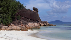 Beach in Laraie bay , Curieuse island , Seychelles Royalty Free Stock Images