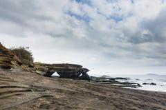 Beach, lava rock and bush Royalty Free Stock Photos