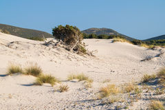 The beach of Le Dune, Porto Pino, Sardinia, Italy. Stock Image