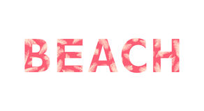 Beach. Lettering tropical illustration royalty free illustration