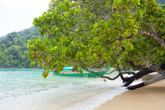 Beach life Royalty Free Stock Image