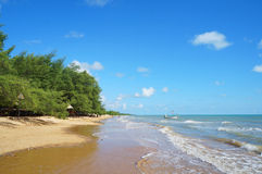 Beach line with forest. In indonesia Stock Image