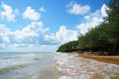 The beach line with forest. In indonesia Stock Image