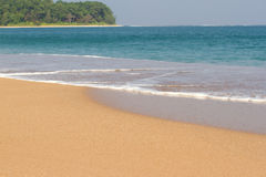Beach line Indian ocean. Sand, tree, forest. Clean lagoon Stock Image