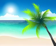 Beach line, white sand and emerald ocean. And palm tree, exotic vacation Stock Illustration