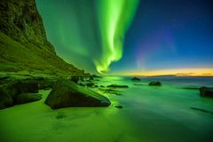 Beach in the Lofoten islands in Norway with strong green northern lights royalty free stock photo