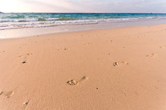 Beach with lots of footprints Royalty Free Stock Images