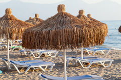Beach loungers and umbrellas Stock Images