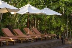 Beach loungers and umbrellas on the beach next to sea in tropical hotel, Thailand. Beach loungers and umbrellas on the beach next to the sea in tropical hotel Stock Photo